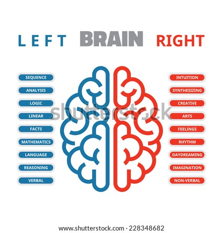 Left and right human brain vector illustration for presentation, booklet, web site and other projects. Left and right human brain infographic. - stock vector