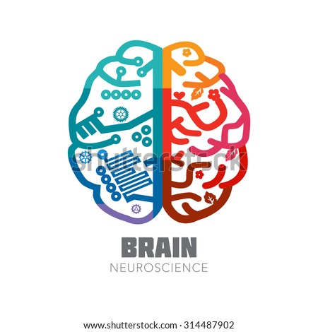 brain creativity behavior Stanford journal of neuroscience mental illness and creativity:  of the psychology in behavior and evolution research group at new-castle university, have concluded that the supposed link.
