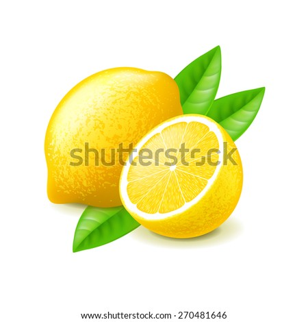Lemon and slice isolated on white photo-realistic vector illustration