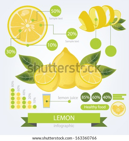 Lemon. infographics. fruits vector illustration. - stock vector