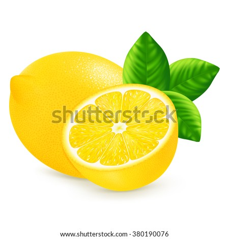 Lemon with leaves isolated on white background. Vector illustration for decorative poster, emblem natural product, farmers market. Perfect for packaging design of cosmetics and food.