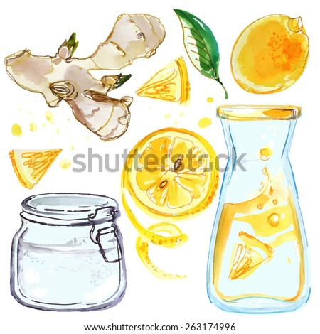 Lemonade, lemons and ginger, a bottle of lemonade, lemon juice, water-color drawings on a white background, vector illustration hand - stock vector