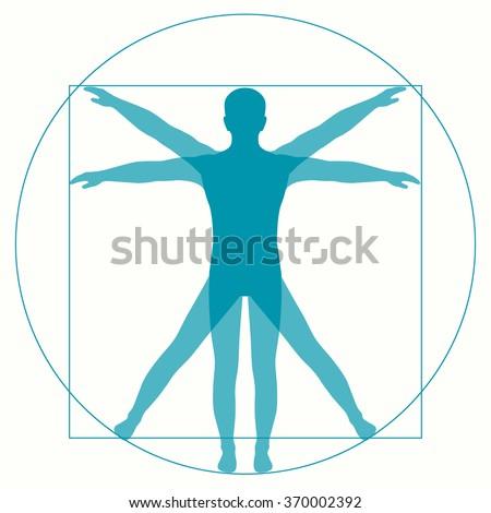 Leonardo Da Vinci Vetruvian Man, human anatomy - stock vector