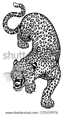 leopard black and white tattoo - 42.1KB