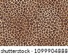 leopard spotted fur texture....
