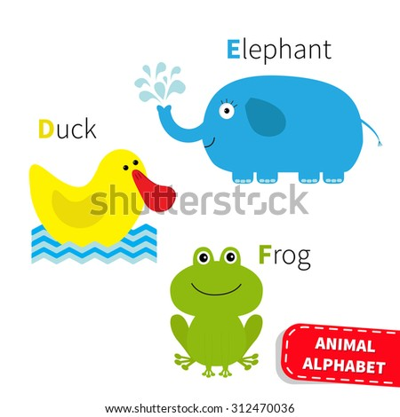 Letter D E F Duck Elephant Frog Zoo alphabet. English abc with animals Education cards for kids Isolated White background Flat design Vector illustration - stock vector