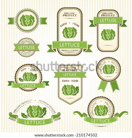 Lettuce labels. Vegetables color labels collection.  - stock vector