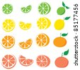 Lime, lemon, orange, grapefruit - sliced and whole - stock vector