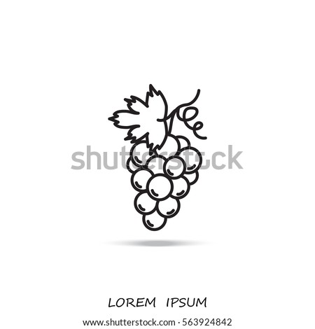 Line icon- grapes