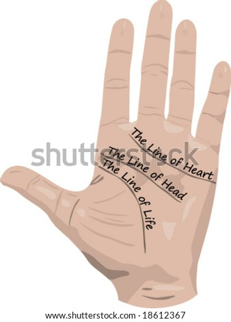 Lines of hand, palmistry - stock vector