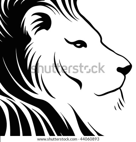 Lion head drawing - stock vector