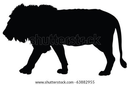 Lion silhouette - stock vector