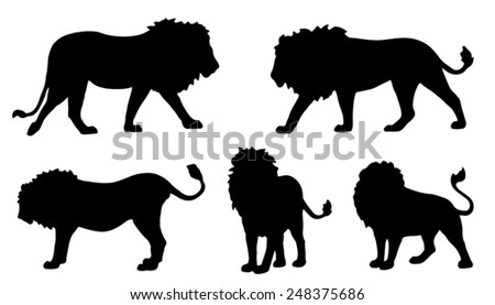 lion silhouettes on the white background - stock vector