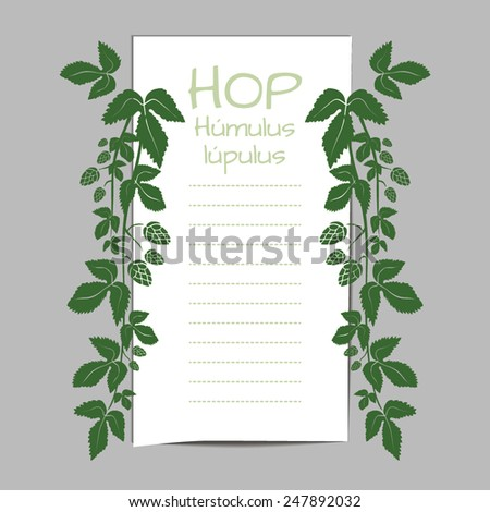 List edged branches dangle hop with leaves and buds. Editable vector illustration. - stock vector
