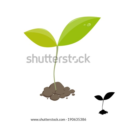 Little plant sprout. Vector illustration - stock vector
