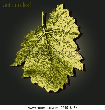 llustration with textured autumn leaf on a dark background - stock vector