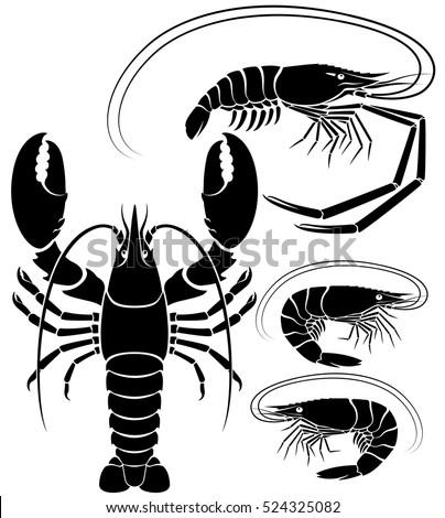 Shrimp Tattoo Stock Images, Royalty-Free Images & Vectors | Shutterstock