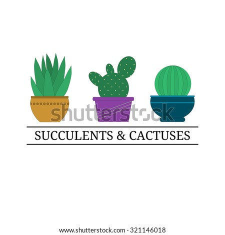 Logo Design Template Cactuses Pot Succulents Stock Vector HD ...