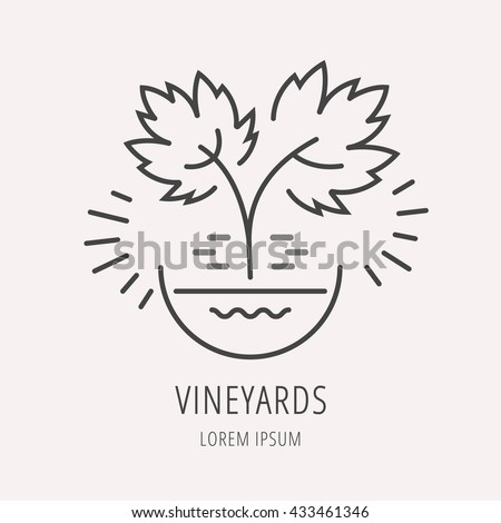 logo or label grapes. Line style logotype template with grape. Easy to use business template. Vector abstract logo or emblem. - stock vector