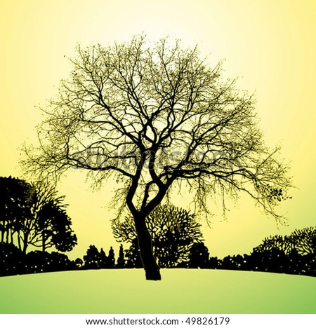 Lonely tree vector background - stock vector