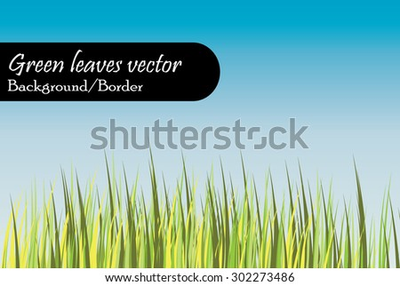 Long green weed grass vector with blue sky background suitable as bottom border or background - stock vector