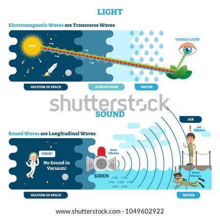Longitudinal Transverse Wave Type Vector Illustration Stock Vector ...