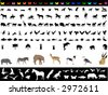 Lots of animals (vectors) - stock vector