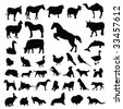 Lots of Domestic animals Silhouettes - stock vector