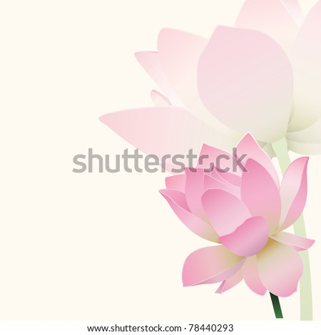 Lotus background - stock vector