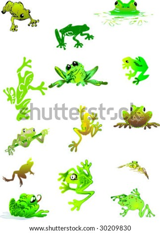 lovely frogs - stock vector