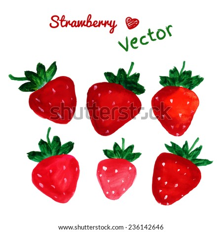 Lovely strawberry set. Hand drawn with paints. Isolated elements. Vector - stock vector