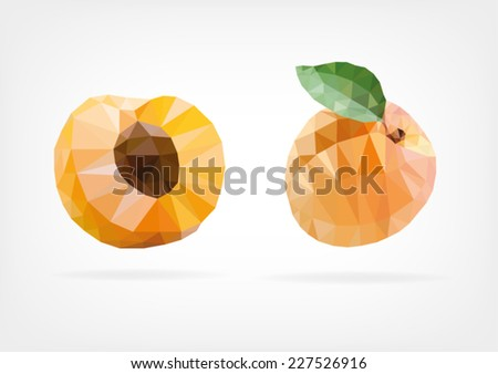 Low Poly Apricot - stock vector