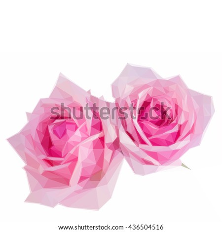 Low poly illustration two pink blooming roses