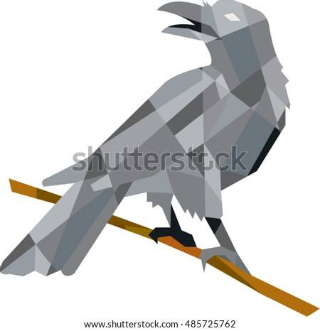 Low polygon style illustration of a crow bird perched on a piece of wood looking back set on isolated white background.