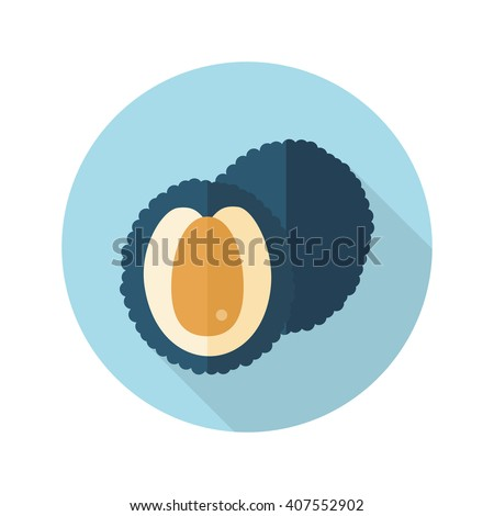 Lychee flat icon. Tropical fruit. Vector illustration, eps 10