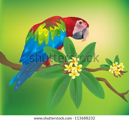 Macaw parrot sitting on a branch with tropical flowers - stock vector