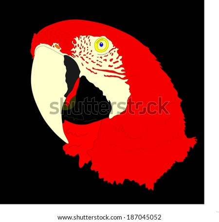 Macaw parrot vector isolated on black background illustration.  Ara realistic vector portrait. Beautiful Pet Parrot.  - stock vector