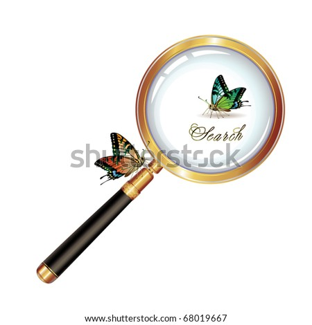 Magnifying glass and butterfly isolated on white background, vector object - stock vector
