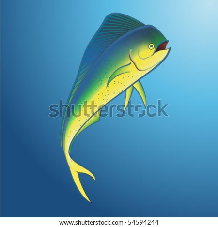 Mahi Mahi Underwater - stock vector