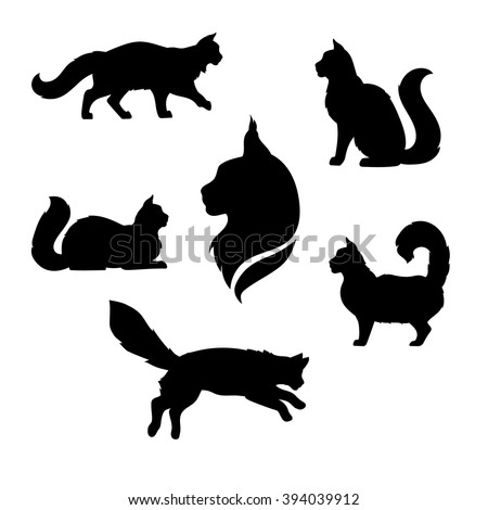 Maine Coon cat icons and silhouettes. Jumping running sitting lying standing going cat. Set of vector black and white pets. Animals outlines. Tattoo art. Isolated fluffy kitten. Cat posing.  - stock vector