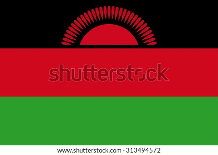 Malawi Flag - stock vector