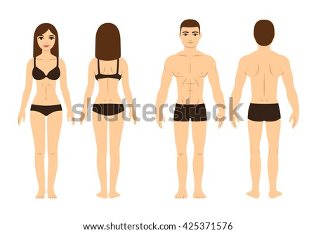 Male and female body, front and back. Isolated vector illustration. - stock vector