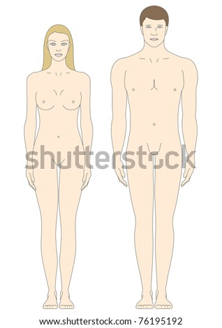 male and female body templates in front view - stock vector