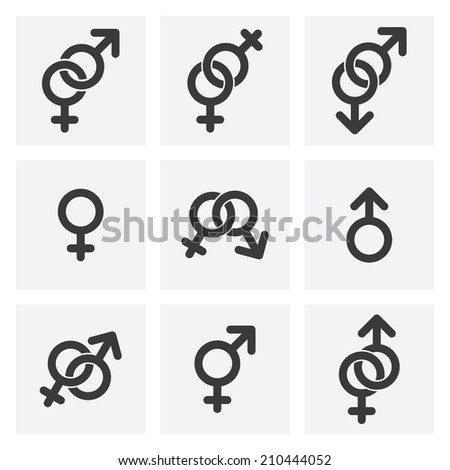 male female and gender symbols. vector - stock vector