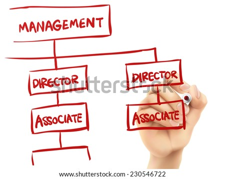 management concept written by hand on a transparent board - stock vector