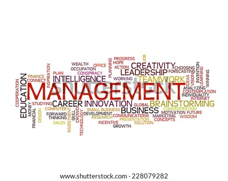 Management strategy concept word cloud - stock vector