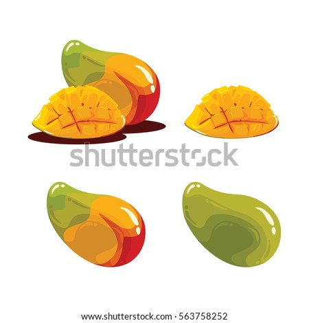 Mango Fruit Fresh Realistic Vector Illustration