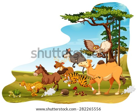 Many animals running in the field - stock vector