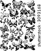 many black and white butterflies - vector - stock vector