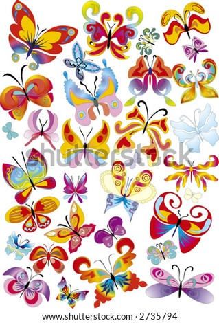 many different multicolored butterflies -  vector